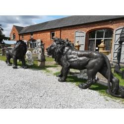 Huge Bronze Lions - Outdoor Statuary