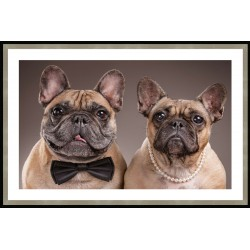 French Bulldogs Framed Wall Art - 60cm x 90cm