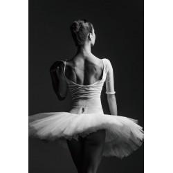 Glass Wall Art - Ballerina Lady Ballet Tutu - 120cm x 80cm