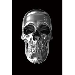 Skull Tempered Glass Wall Art - 80cm x 120cm